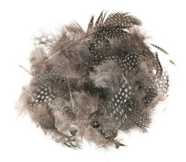 Parelhoen veren 3 gram